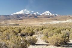 Altiplano