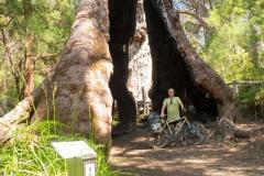 Západní Austrálie - Western Australia-101