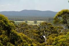 Západní Austrálie - Western Australia-103