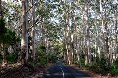 Západní Austrálie - Western Australia-149