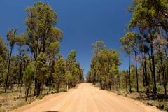 Západní Austrálie - Western Australia-15