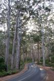 Západní Austrálie - Western Australia-150