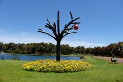 Západní Austrálie - Western Australia-152