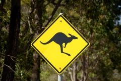 Západní Austrálie - Western Australia-18