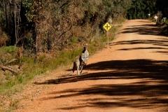 Západní Austrálie - Western Australia-21
