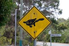 Západní Austrálie - Western Australia-26