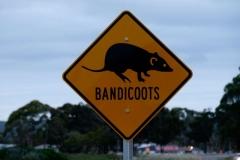 Západní Austrálie - Western Australia-28
