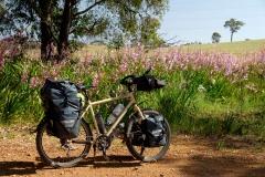 Západní Austrálie - Western Australia-30