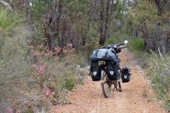 Západní Austrálie - Western Australia-4