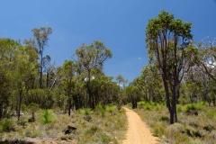 Západní Austrálie - Western Australia-40