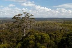 Západní Austrálie - Western Australia-68