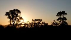 Západní Austrálie - Western Australia-99
