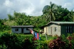 Fidži - Fiji-84