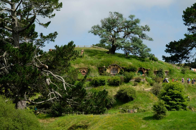 Nový Zéland, Umělý dub / New Zealand, Reconstructed oak tree