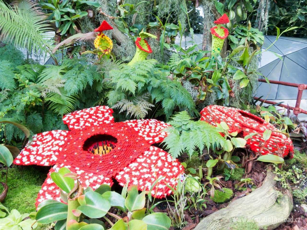 Singapur, Zahrady v Zálivu - Singapore, Gardens by the Bay-4