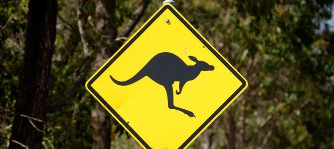 Austrálie – fotografie / Australia – gallery
